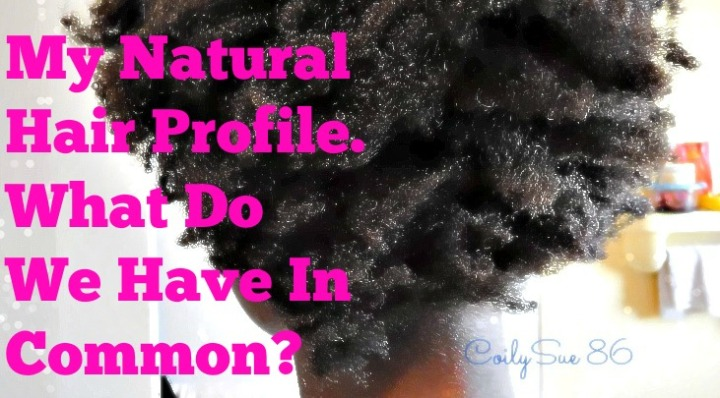 My Natural Hair Profile. What Do We Have In Common? ~CoilySue86